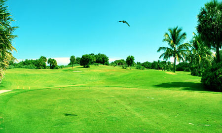 Overview of golf course named Red Reef Executive Golf Course