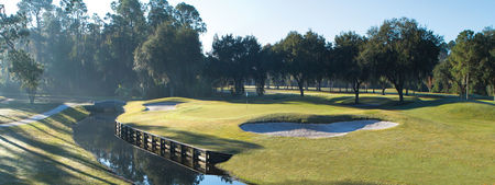Overview of golf course named Rio Pinar Country Club