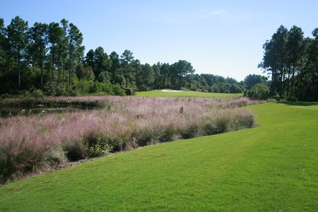 Saint James Bay Golf Club Cover Picture