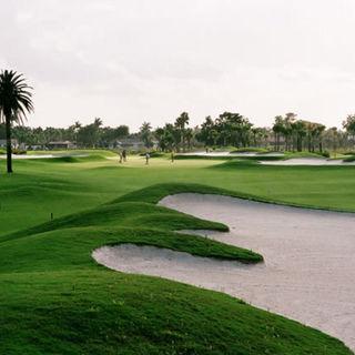 City of lauderhill golf course cover picture