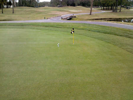 Countryway Golf Club Cover Picture