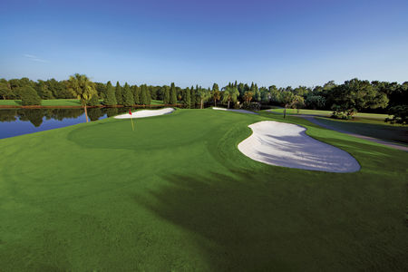 Lone Palm Golf Club Cover Picture