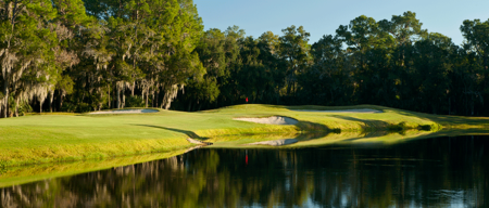 Overview of golf course named East Lake Woodlands Golf and Country Club