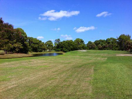 Palmetto Pines Golf Course Cover Picture