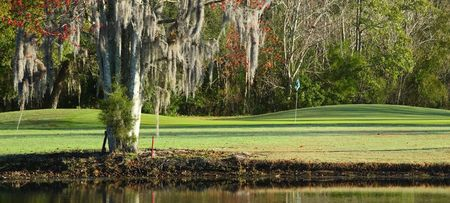 Plantation on Crystal River Cover Picture