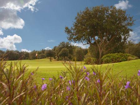 Stonegate Golf Club Cover Picture