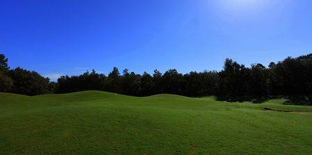 Twisted oaks golf club cover picture