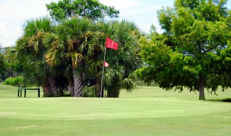 Venice East Golf Club Cover Picture