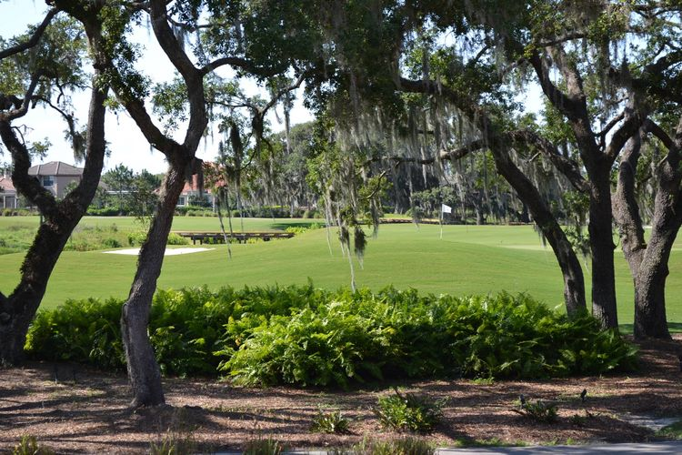 The founders golf club cover picture