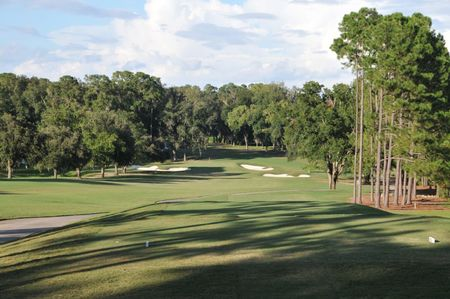 Ocala golf club cover picture