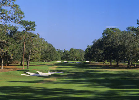 Ocala national golf club cover picture