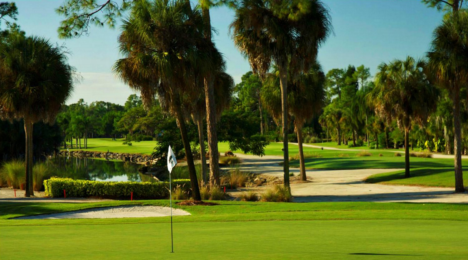Overview of golf course named Forest Country Club, The