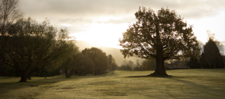 Mountain ash golf club cover picture