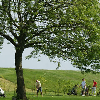 Aabenraa golf club picture