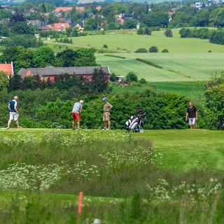 Aarhus aadal golf club picture