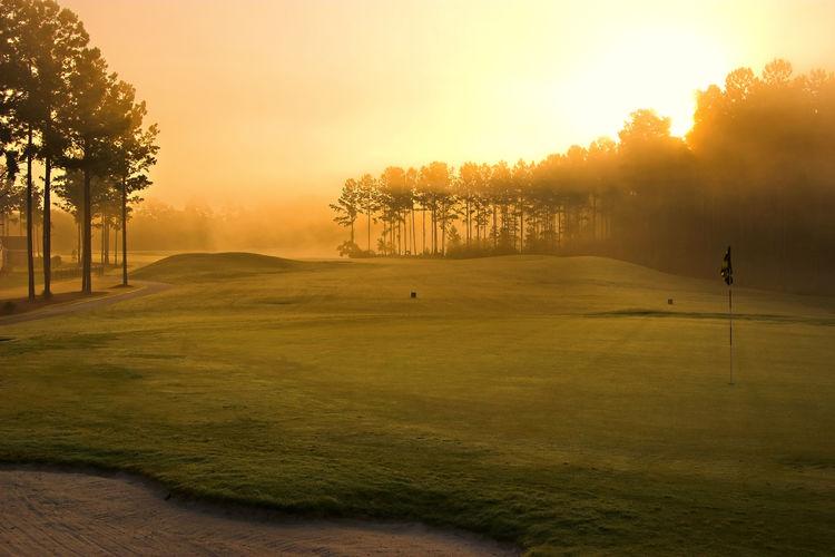 Aarhus golf club picture