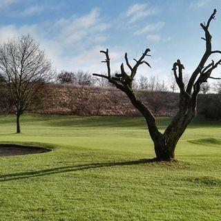 Albertslund golf club picture