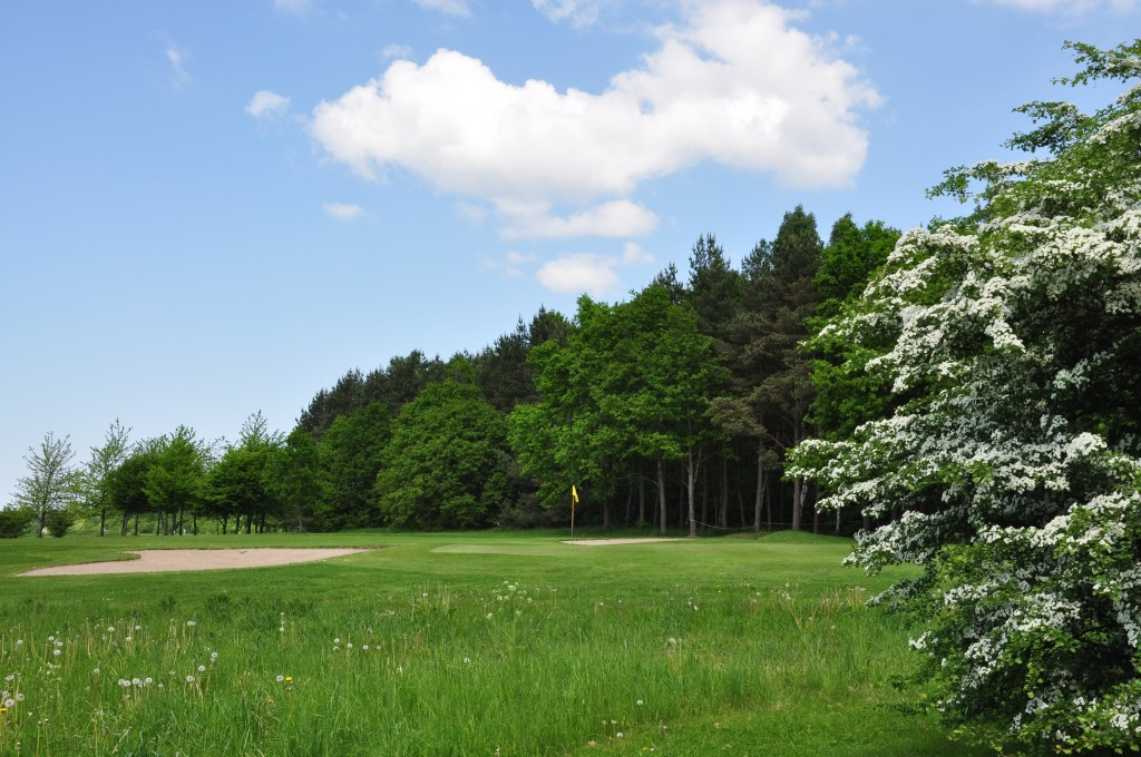 Overview of golf course named CGC Golf Club