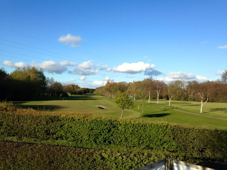 Alder root golf club cover picture