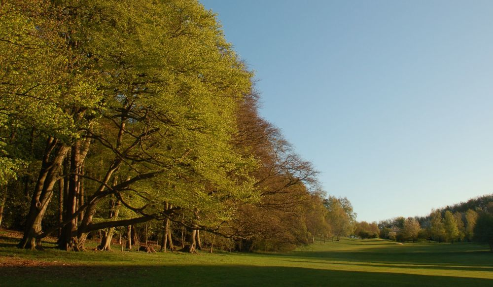 Ampleforth college golf club cover picture