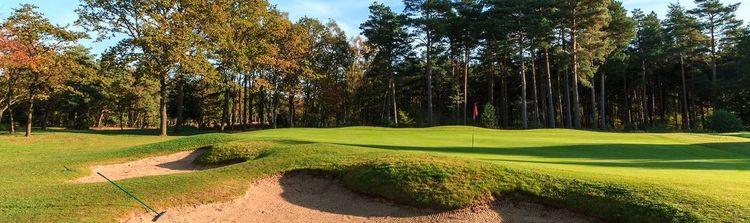 Army golf club cover picture