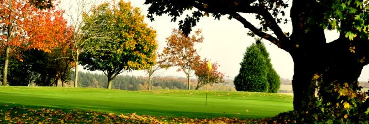 Ashley wood golf club cover picture