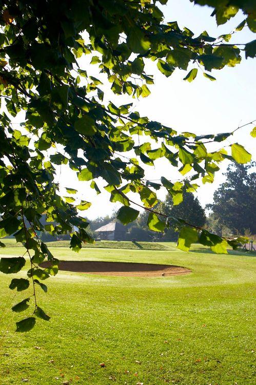 Avington park golf course cover picture