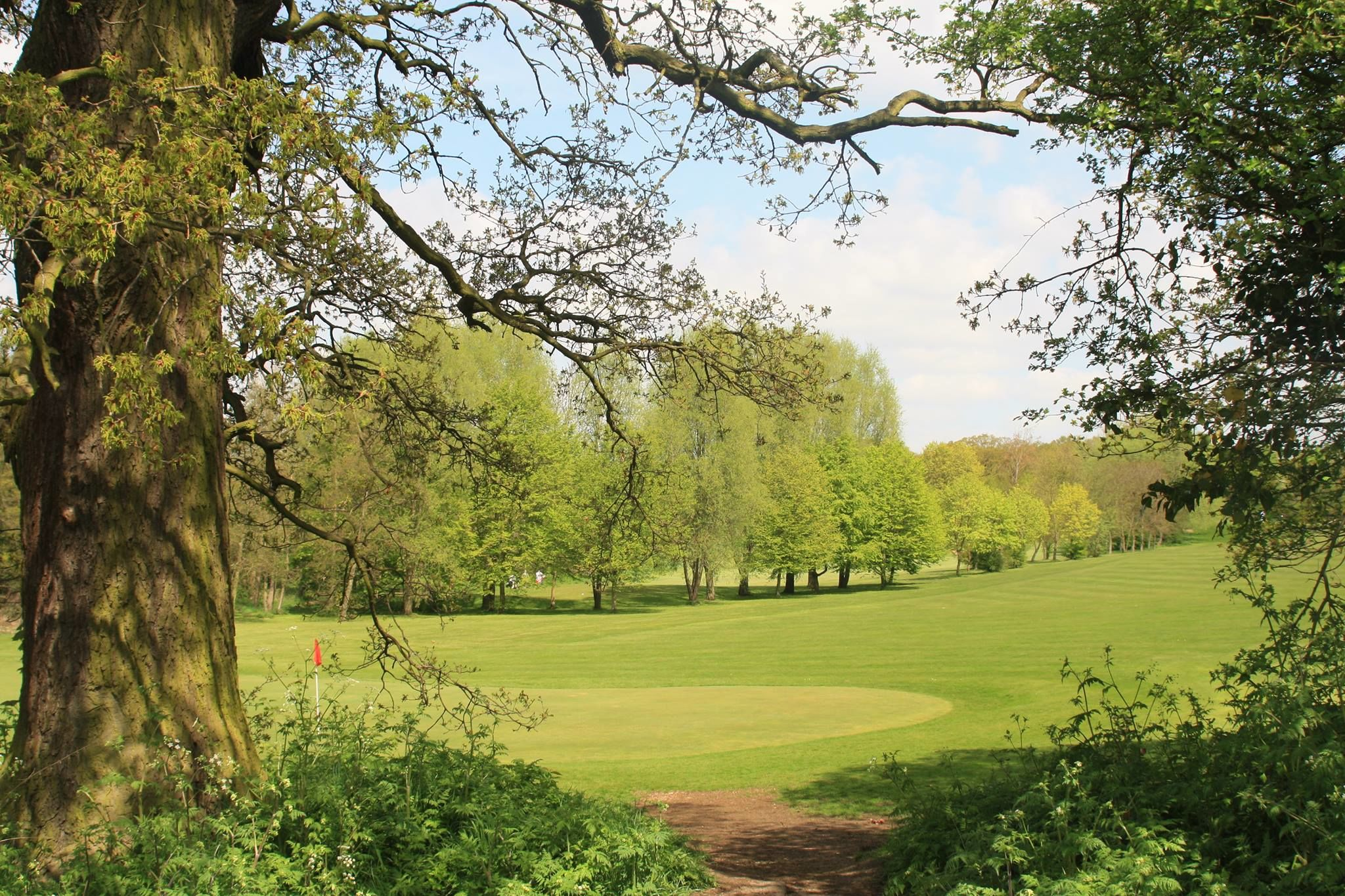 Basildon golf club cover picture