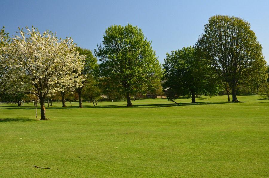 Tynedale river park