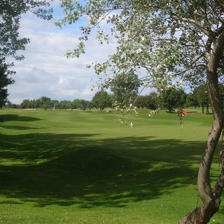 Tynemouth golf club cover picture