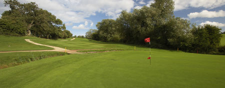 Overview of golf course named Whitefields Golf Club