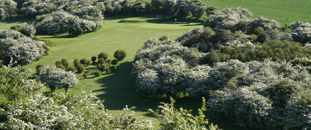 Brighton and Hove Golf Club Cover Picture