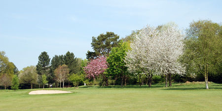 Dereham golf club cover picture