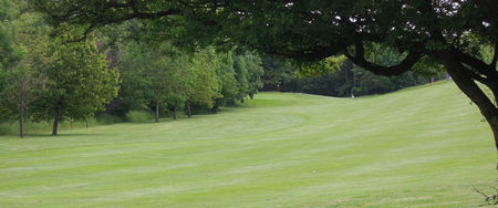 Overview of golf course named Naunton Downs Golf Club