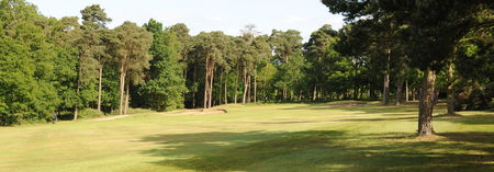 Chelmsford Golf Club Cover Picture