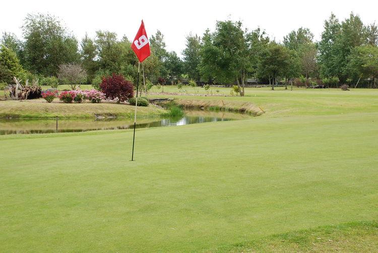 Ardfert golf club cover picture