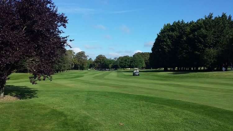 Athy golf club cover picture