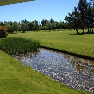 Ballymoney golf course cover picture