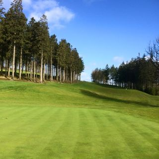 Baltinglass golf club cover picture