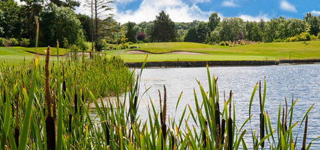 Overview of golf course named Naas Golf Club