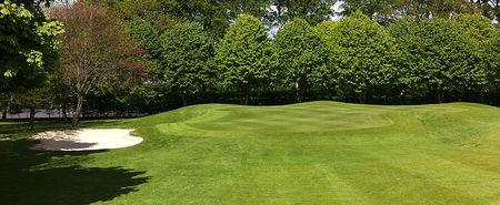 Overview of golf course named Newbridge Golf Club