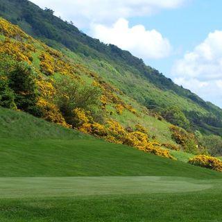 Alva golf club cover picture