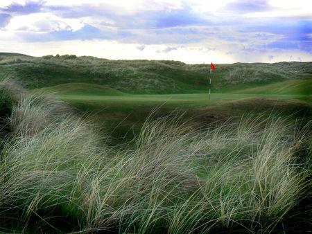 Profile cover of golfer named Brad Murray