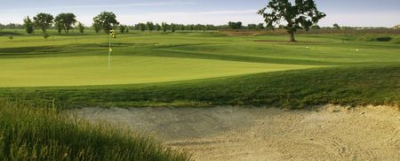 Wild wings golf club cover picture