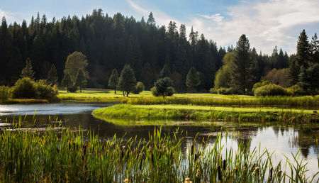 Plumas pines golf resort cover picture