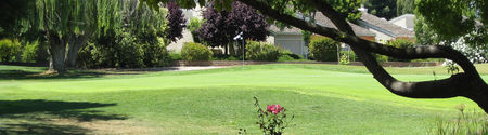 Pruneridge Golf Course Cover Picture