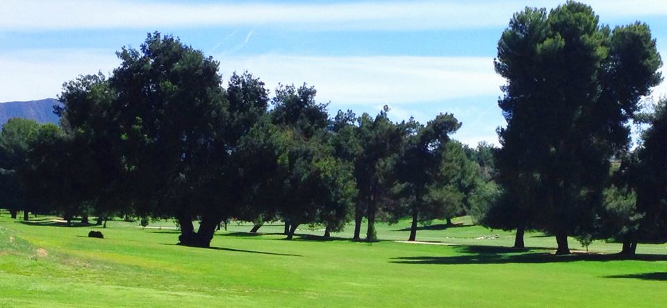 Overview of golf course named Calimesa Country Club