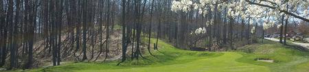 Salt Creek Golf Club Cover