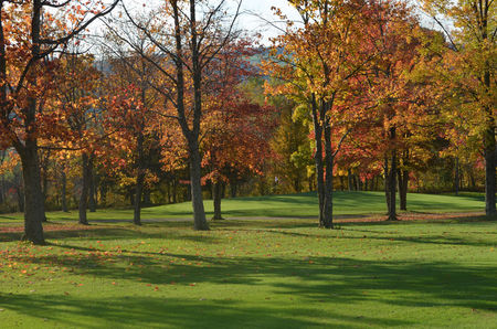 Maple hill golf club cover picture