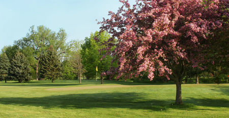 Oneida community golf club cover picture